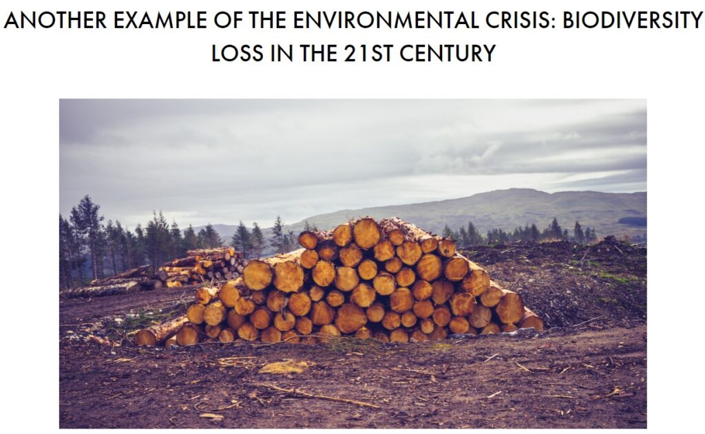 Another example of the environmental crisis: biodiversity loss in the 21st century